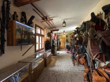 Muzeum Jazdy Konnej
