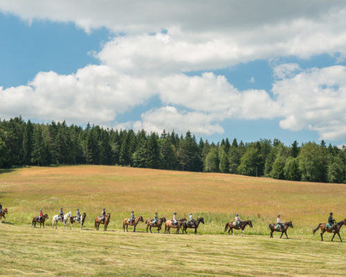 Zapraszamy na jesienne rajdy konne do Gładyszowa